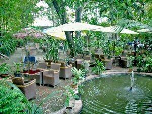Kinh doanh cà phê sân vườn