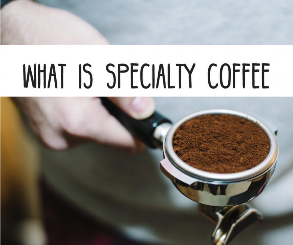 31 Cà phê specialty