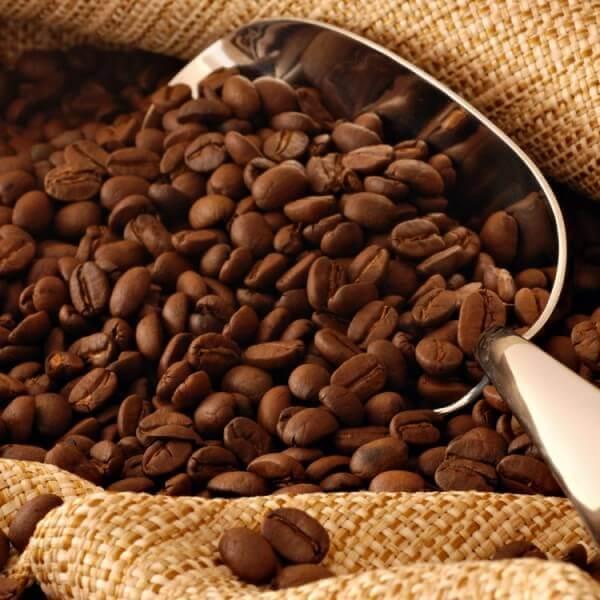 cà phê nào ngon