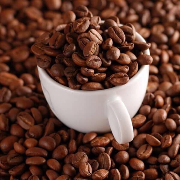 cà phê ngon nhất